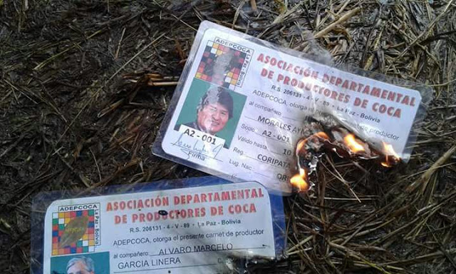 """En Pasto Pata, queman los carnés de """"cocalero"""" de Morales y García y anuncian marcha"""