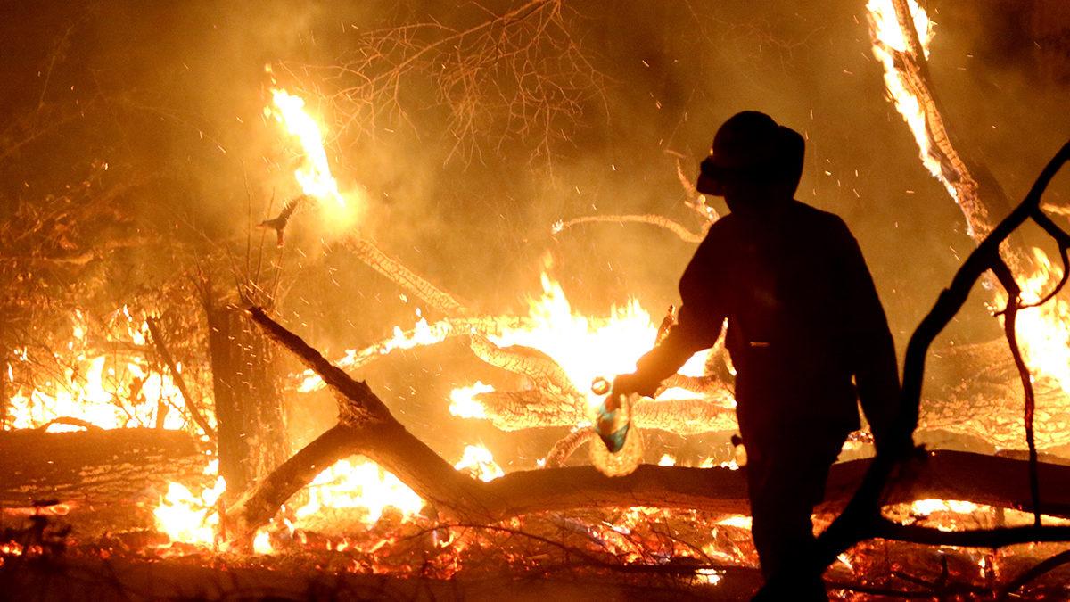 El Cejis observa la ausencia de información sobre la situación de territorios indígenas en los reportes gubernamentales sobre los focos de calor