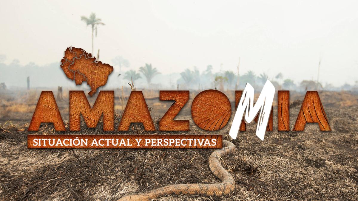 Crisis estructural de la Amazonia será analizado hoy por especialistas de la región