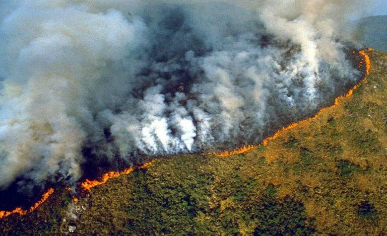 Panel Científico para la Amazonía elabora informe sobre la cuenca amazónica y su bioma
