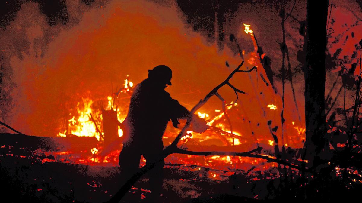 Tribunal Internacional de la Naturaleza califica de ecocidio incendios de 2019 y declara responsables a Morales y Añez