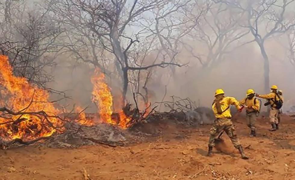 """Incendios forestales: """"las tierras fiscales están siendo disputadas"""""""