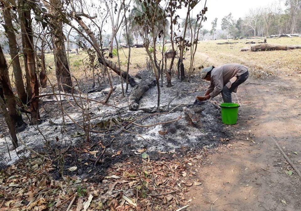 El postincendio impacta en la vida social de las comunidades de la Chiquitanía