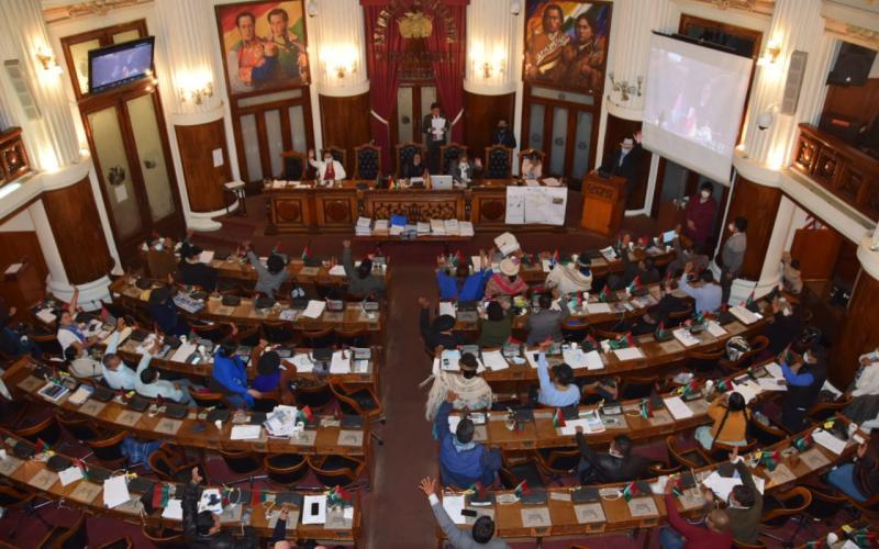 ALP aprueba informe final del caso Senkata y Sacaba y recomienda juicio de responsabilidades a Añez y procesos penales a 11 ministros