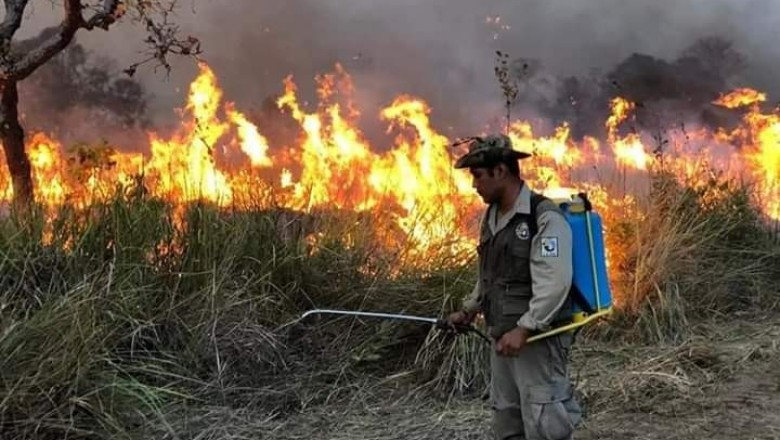 En octubre los focos de calor en territorios indígenas y áreas protegidas sumaron 22.225