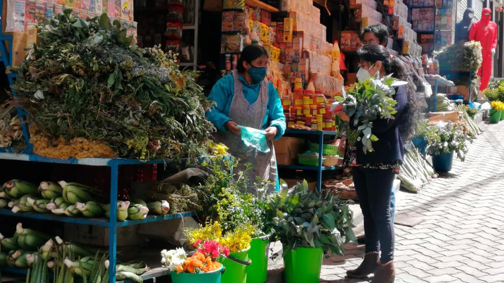 COVID-19: Cifra de casos positivos se dispara y Choquehuanca insta a revalorizar la medicina tradicional