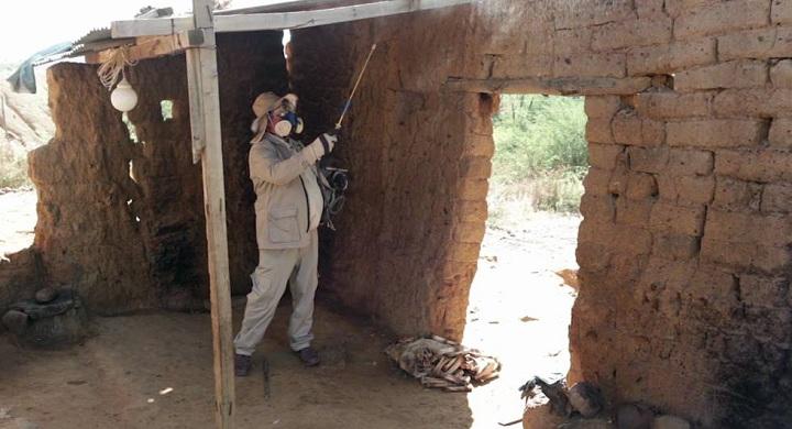 El 70% de las personas con Chagas no saben que están infectadas