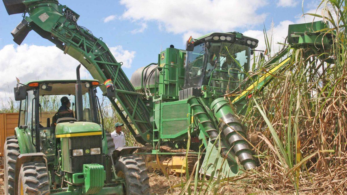 Tres Hermanos es amenazada por la azucarera estatal