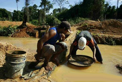 ¿Cómo está afectando la minería a los pueblos indígenas de la Amazonía en Bolivia?