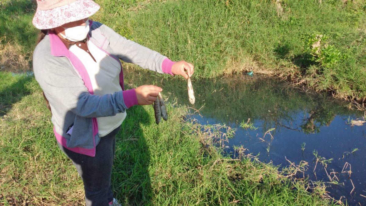 Defensoría del Pueblo investiga la contaminación de las vertientes de agua de la comunidad Campo Pajoso de Yacuiba