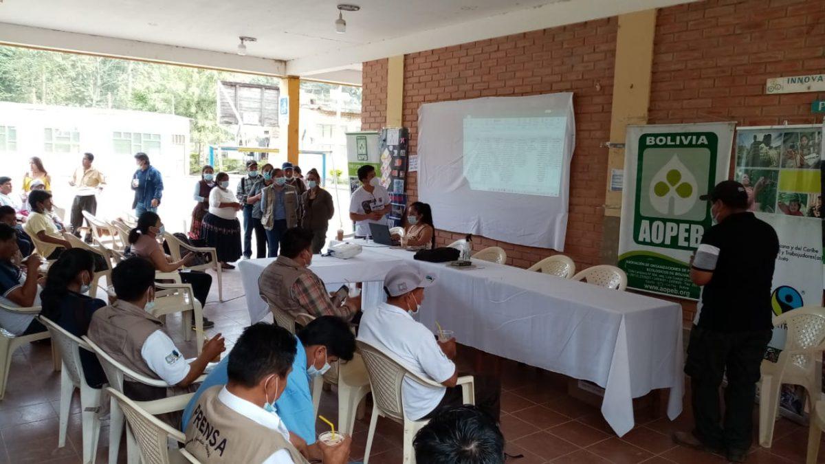 Productores cafetaleros plantean la industrialización y venta del café orgánico del productor al consumidor