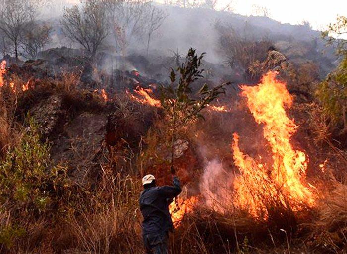 Focos de calor se incrementan en Santa Cruz, Beni y La Paz